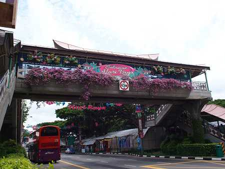 singapore050-2